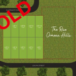 'THE RISE' AT ORMEAU HILLS